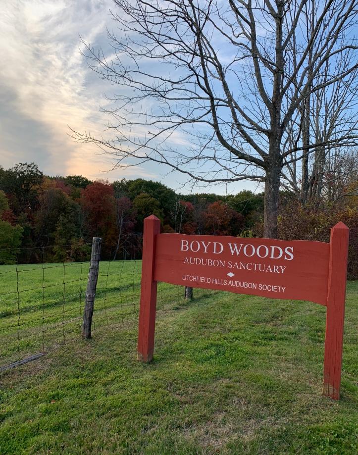 Boyd Woods